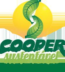 Cooper Sustentável Escolas